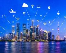 China's Digital Future